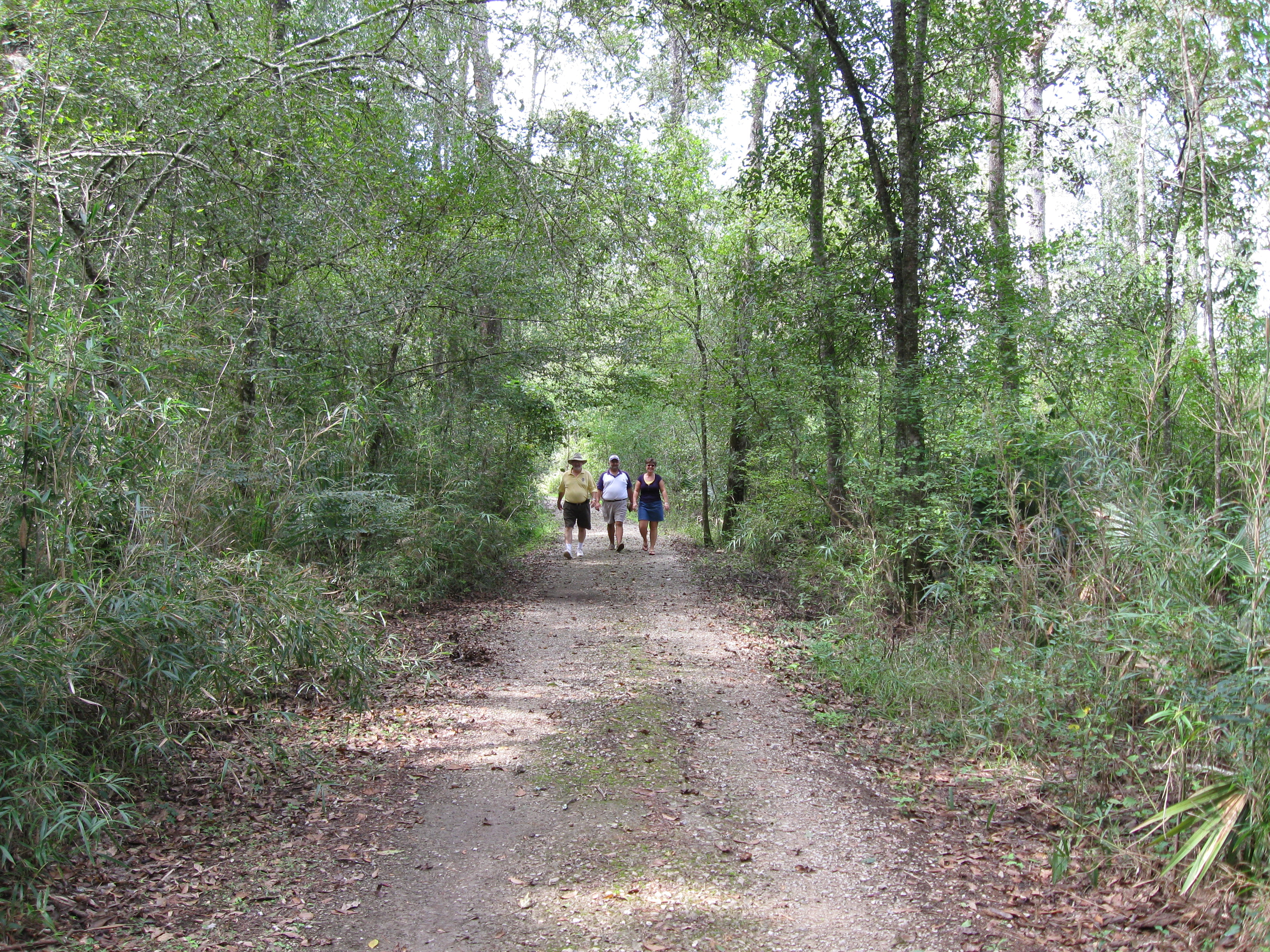 a fall weekend in tickfaw state park louisiana travel
