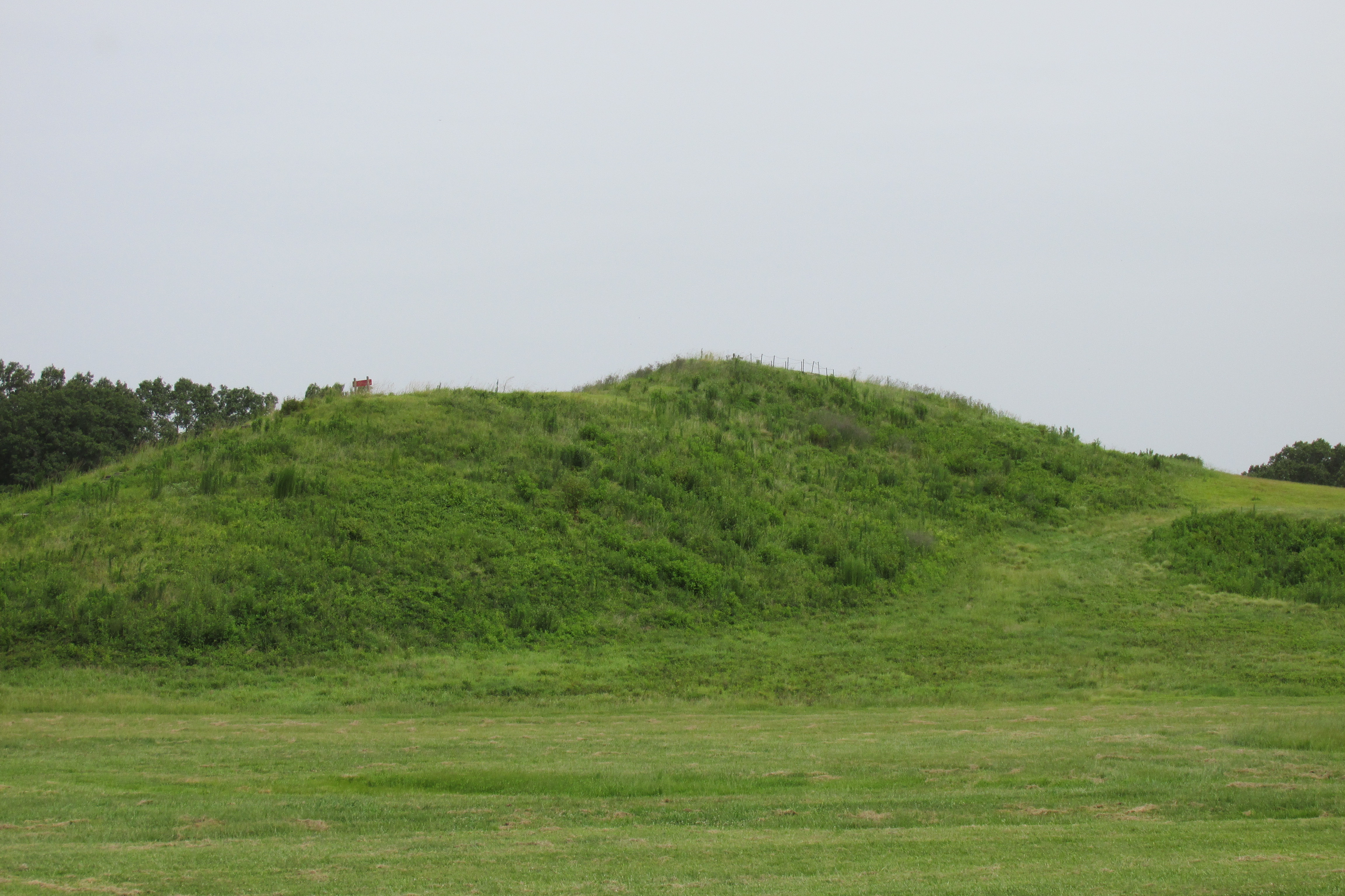 Remainder of Bird Mound